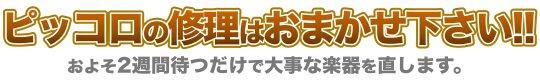 ピッコロ修理北海道空知郡奈井江町